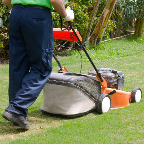Gardening and Lawncare Expert Services